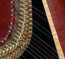 Harp by discerninglight