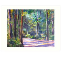 Forestry Trail   Art Print