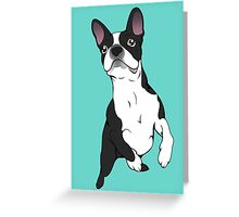 Boston Terrier Time!  Greeting Card