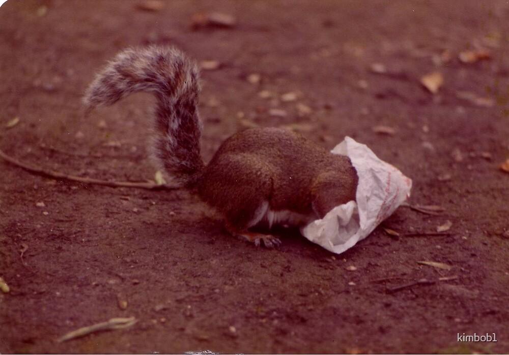 nuts nuts nuts by kimbob1