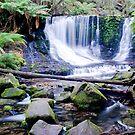 Horseshoe Falls - Tasmania by cowwws