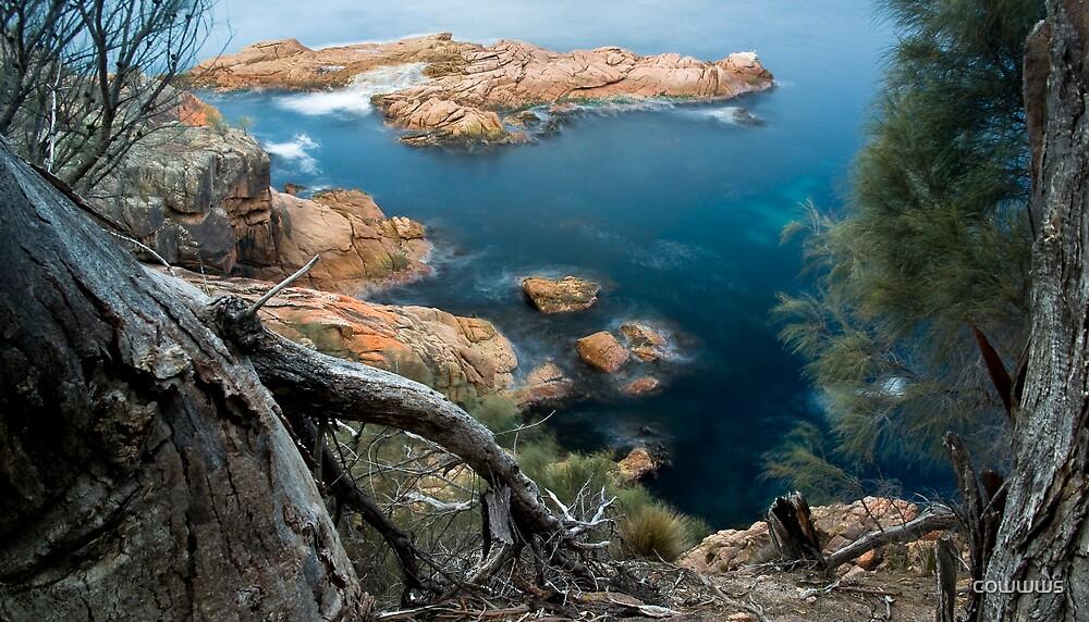 Tasmanian Coastline by cowwws