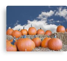 Autumn Pick Canvas Print