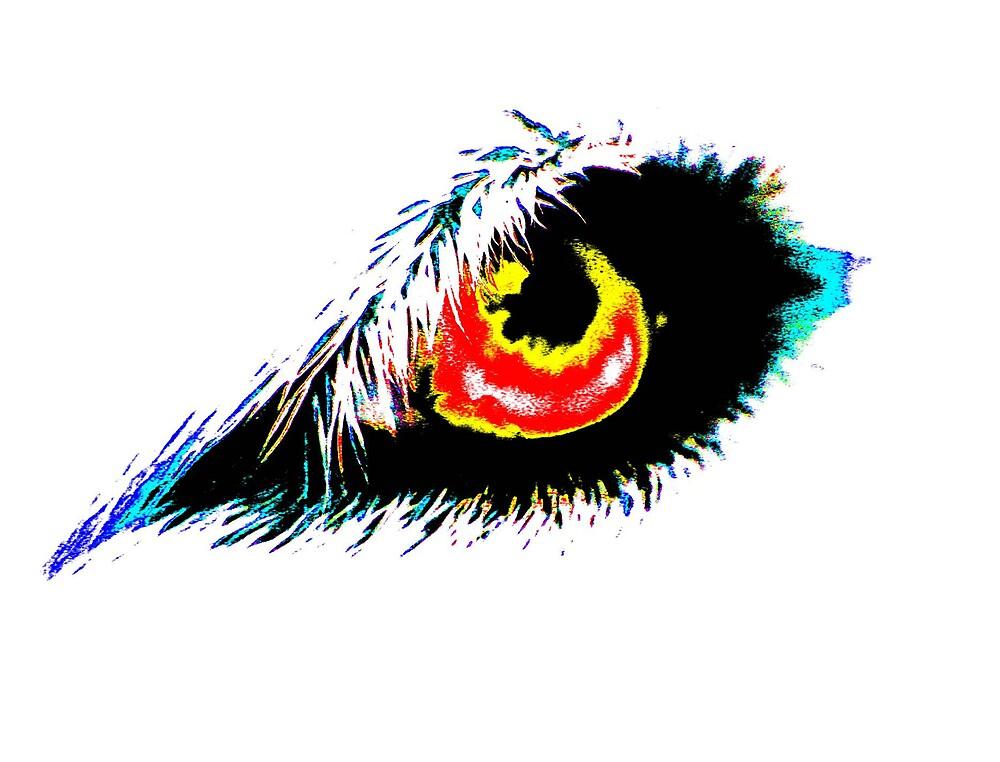 Color Eye by Tommy Seibold