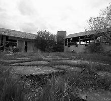 Barnyard by r2shotme