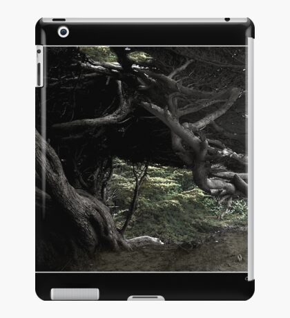 Cypress Freeway Fine Art Poster iPad Case/Skin