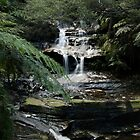 Falling Water by Liam Murphy