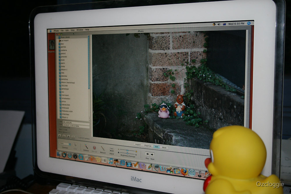 My rubber duck is jealous. Thinks I'm taking too much interest by Ozcloggie
