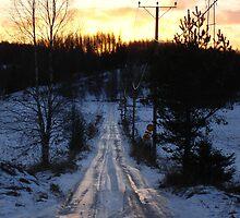 Long road home... by Jayden Vecchio