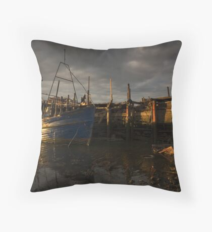 The Tub Throw Pillow
