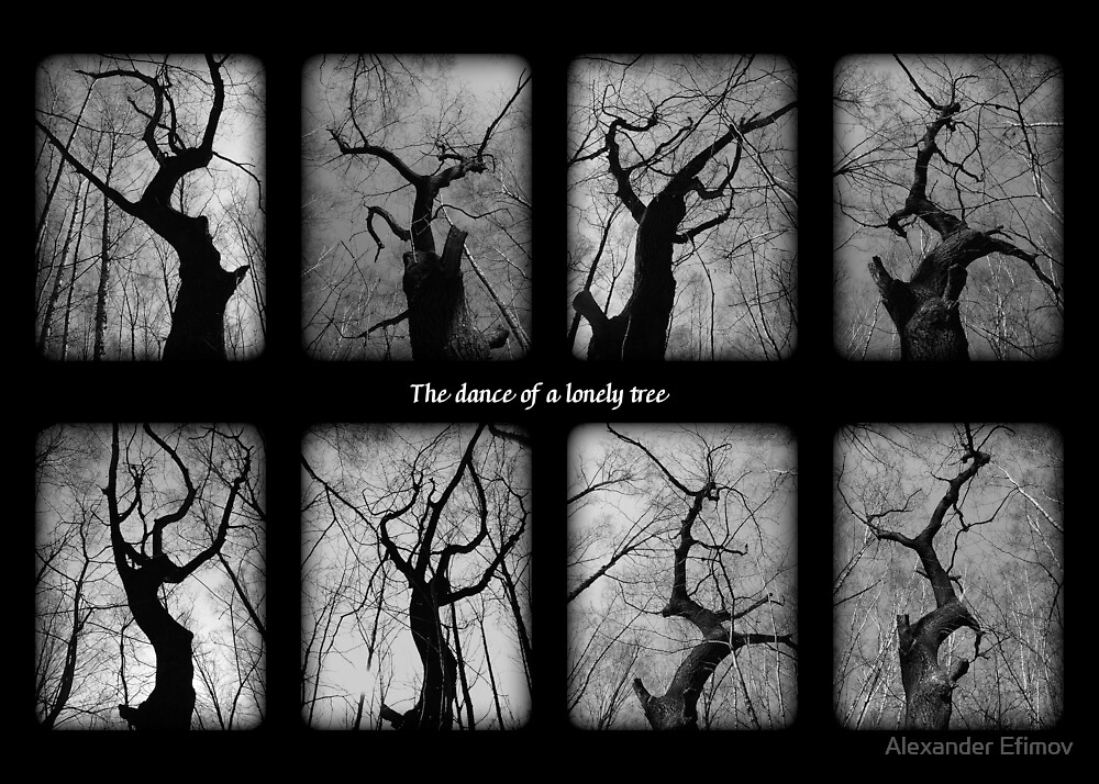 The dance of a lonely tree by Alexander Efimov