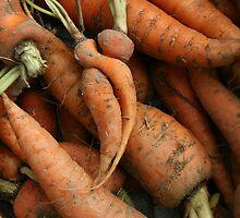 Carrot Cuddle by Luisa Schellens