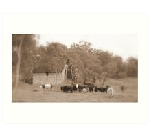 The Old Mill House - Swan Valley - Western Australia  Art Print