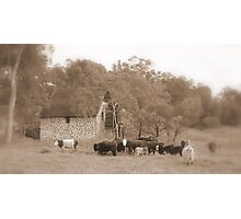 The Old Mill House - Swan Valley - Western Australia  Photographic Print
