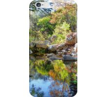 The Lost Maples iPhone Case/Skin