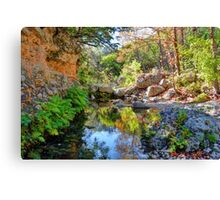 The Lost Maples Canvas Print