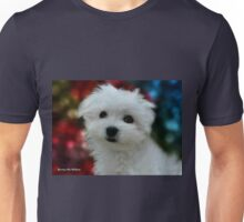 Hermes the Maltese - My Growing Boy Unisex T-Shirt