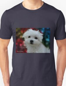 Hermes the Maltese - My Growing Boy T-Shirt
