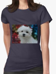 Hermes the Maltese - My Growing Boy Womens Fitted T-Shirt