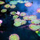 Water Lilies  by John Rivera