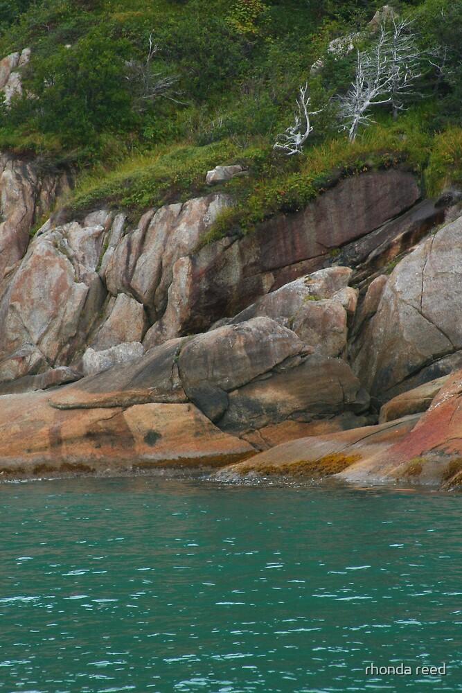 Coastal cliffs by rhonda reed