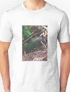 Bowerbird T-Shirt