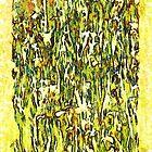 Field of Iris by Kenneth Hoffman
