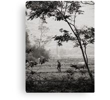 daily life Canvas Print