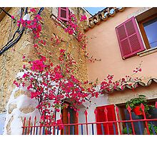 Pink Shutters With Bougainvillea............................Majorca Photographic Print