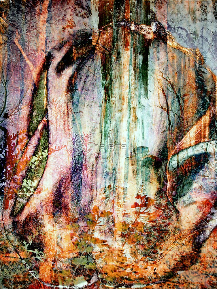 Into the forest 11 by helene