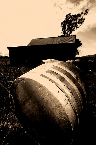 wine barrels by studiofascino