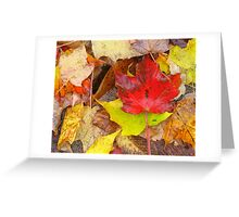 Fall Leaf Collage - Quebec Greeting Card
