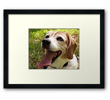 Happy to see you!! Framed Print
