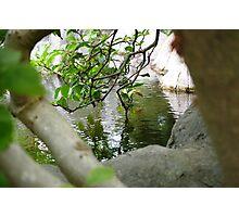 Hidden Paradise Photographic Print