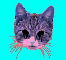 Weird Cat by Zachary Garrison