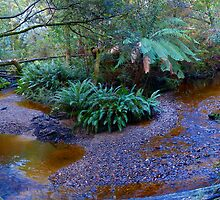 Below Hogarth Falls - Strachan by mick8585