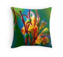 rsp-o-a1 Throw Pillow