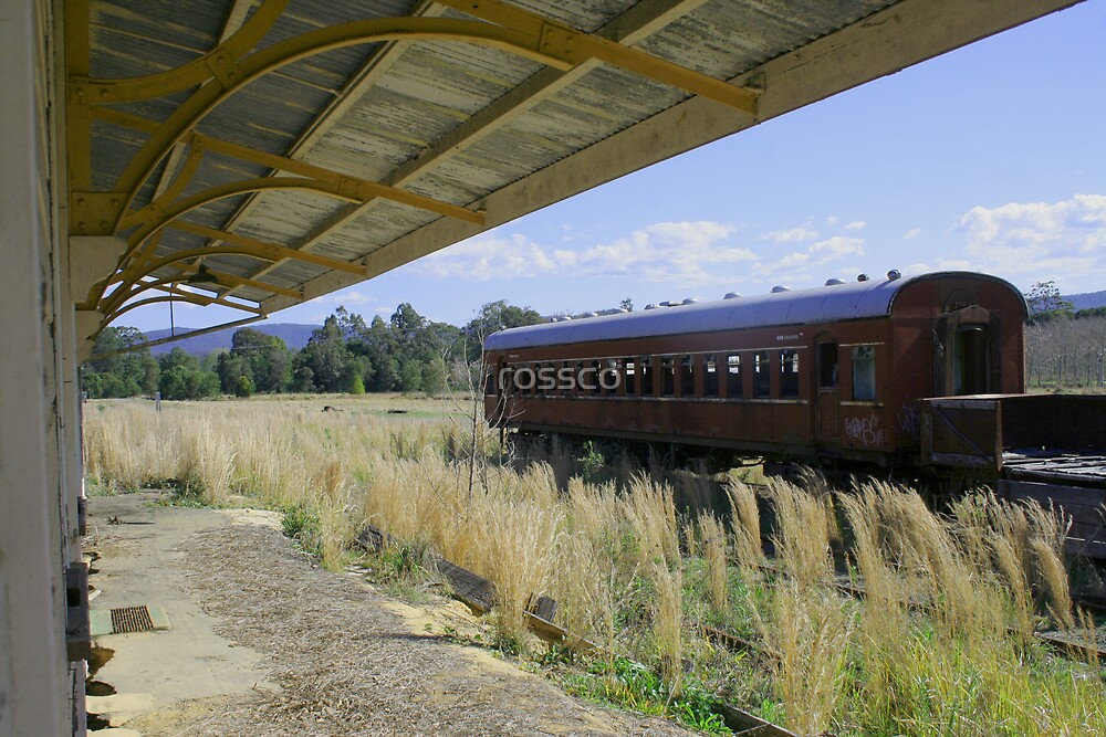 The Last Train To Glenreagh by rossco