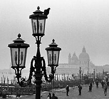 Venice by Tiffany Dryburgh