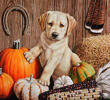 Pumpkin Harvest Puppy by csforest