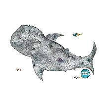 Nemos Loves Whale Sharks by NemosPequenos