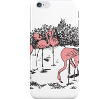 Funky Flamingos  iPhone Case/Skin