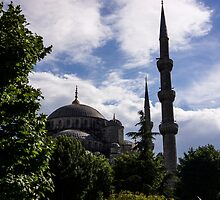 Blue Mosque by Mohammed Abdul Quddus