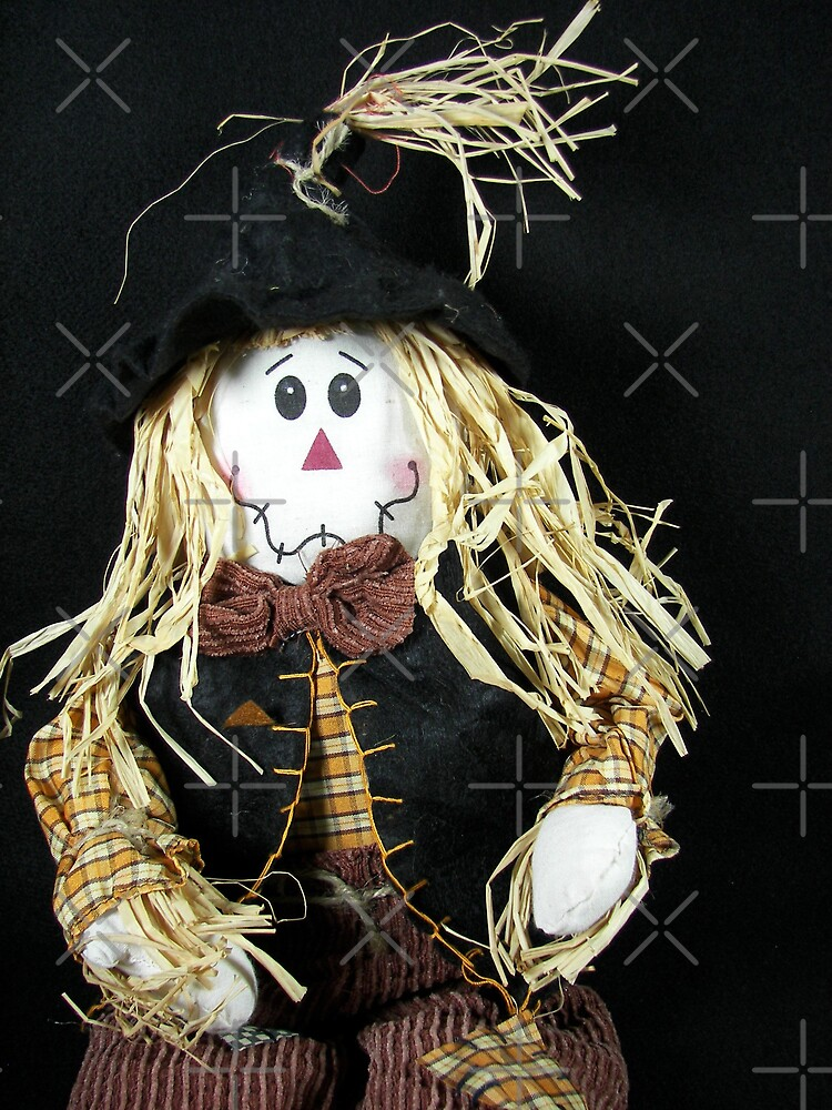Happy Scarecrow by Maria Dryfhout