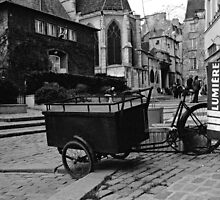 the cart by J.K. York