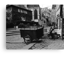 the cart Canvas Print