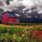 The Red Barn by signore