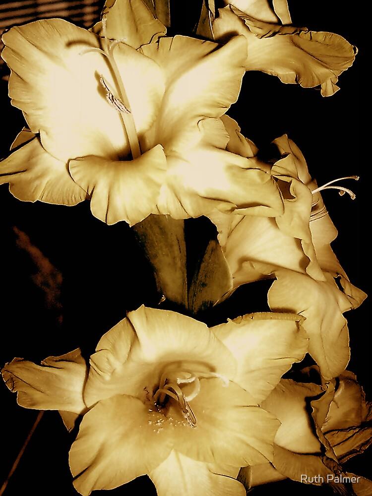 Gladioli by Ruth Palmer