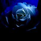 Blue Nun .......... by Arthur Chambers