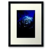 Blue Nun .......... Framed Print